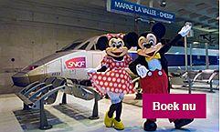Disneyland tickets met korting
